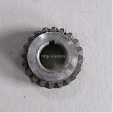 Шестерня балансира Д22-1005426-А2 (Т-25, Д-21) ведомая